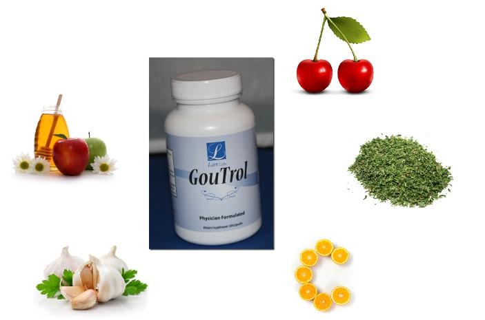 goutrol gout supplement